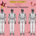 SCSDUMMIESFRONT_72